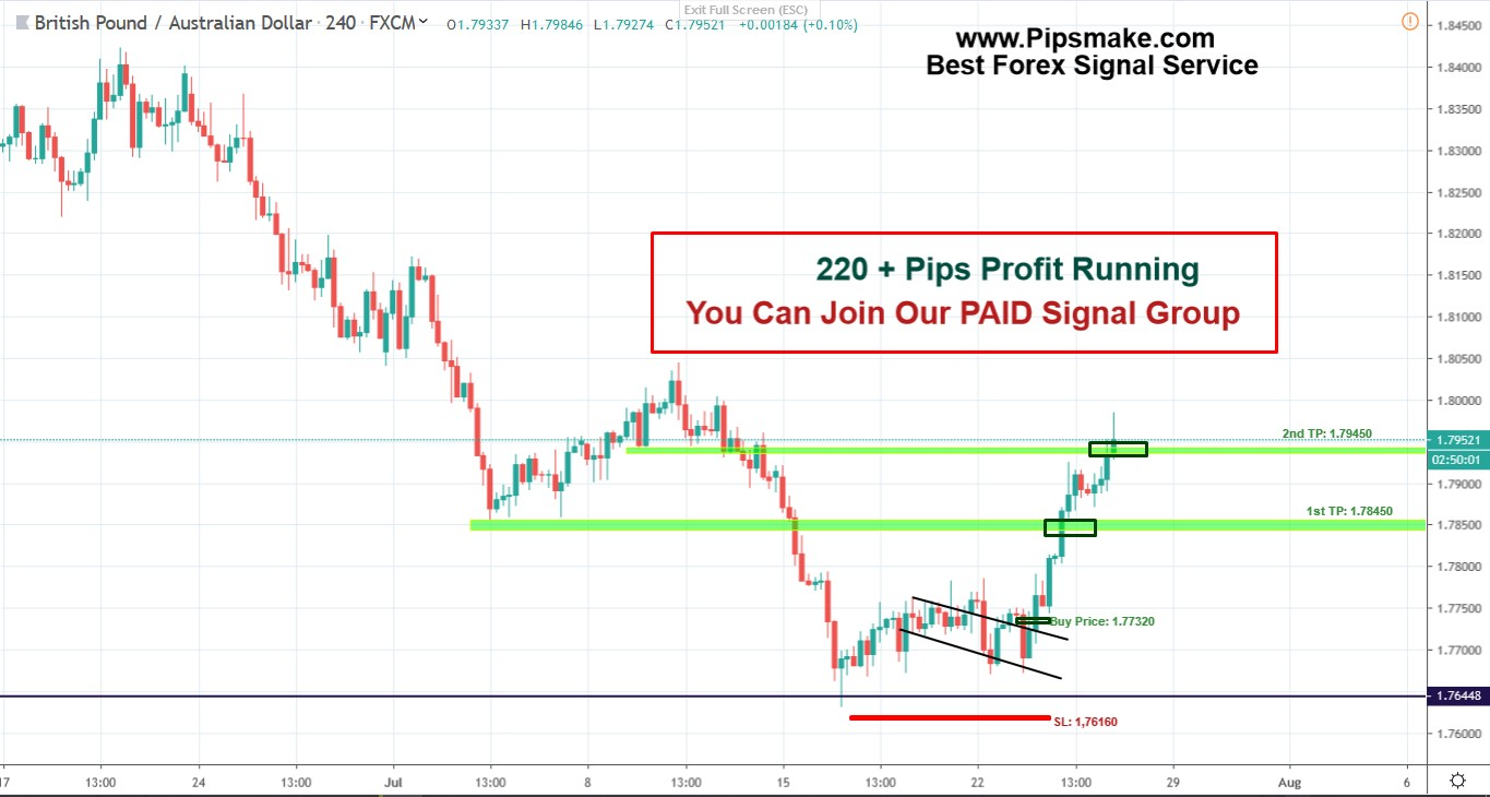 Forex pips signal review