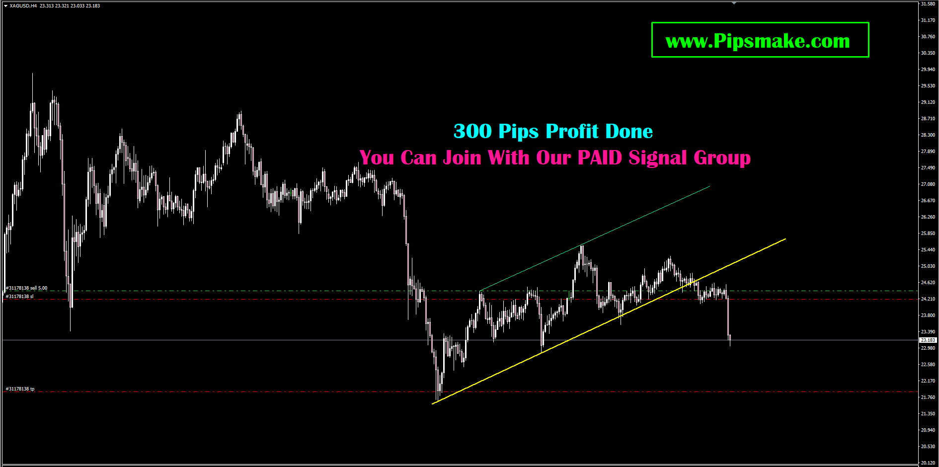 Forex Signal Service