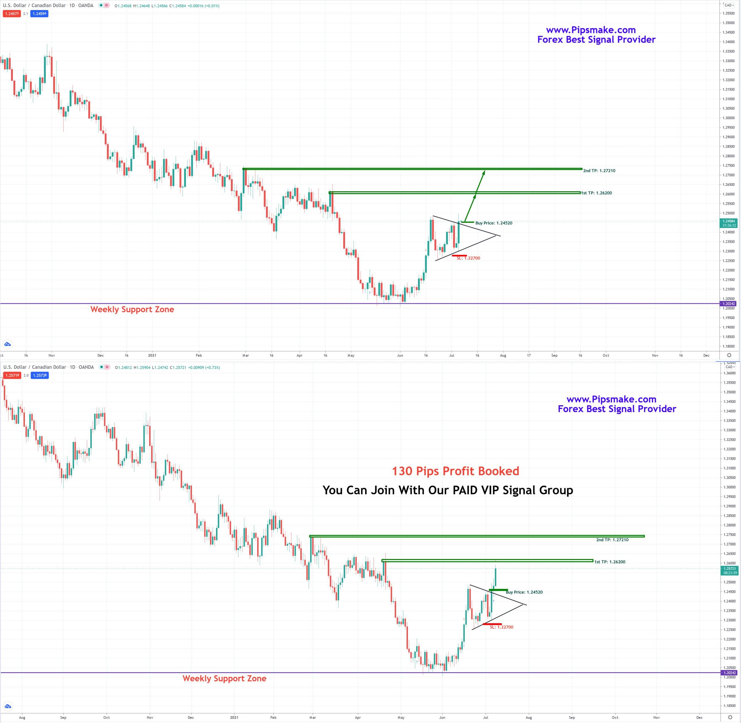 Best Forex Signals Provider | Forex Signals